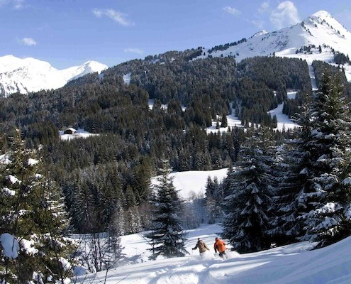 Morzine powder